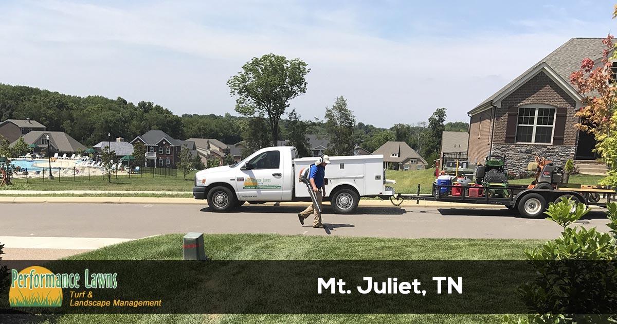 Mt. Juliet Tennessee lawn service