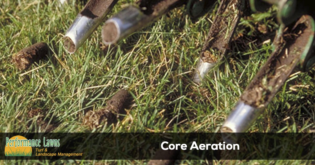 Lawn aeration services in Tennessee