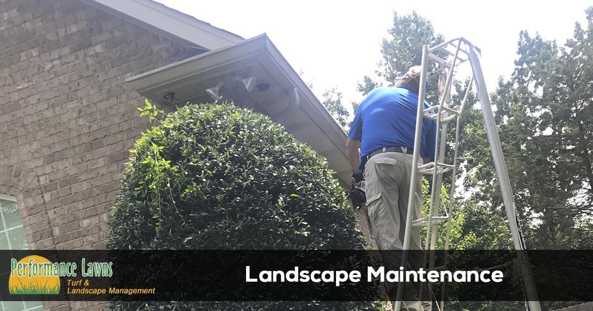 bush trimming and mulch installation in Mt. Juliet, TN
