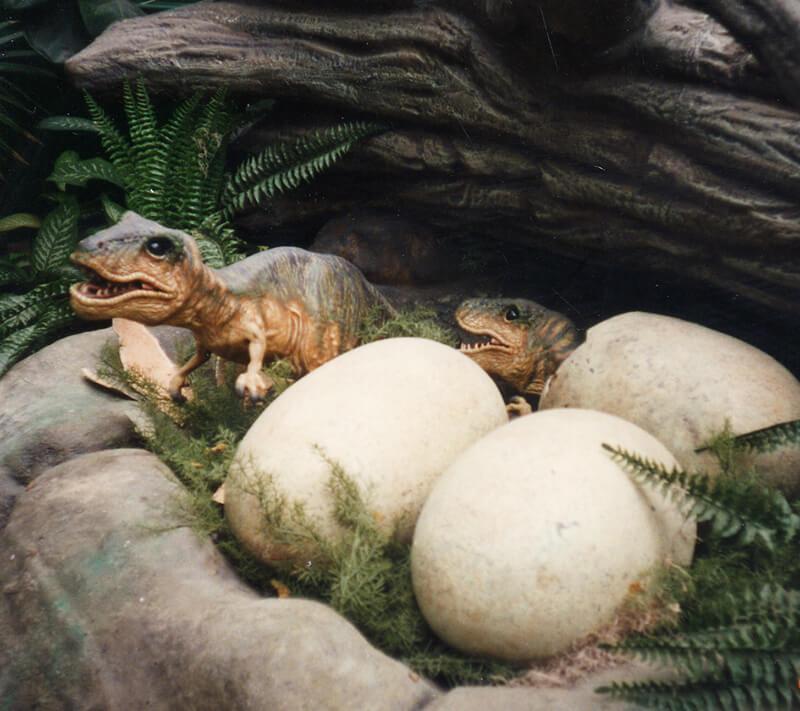 Trex Hatchlings