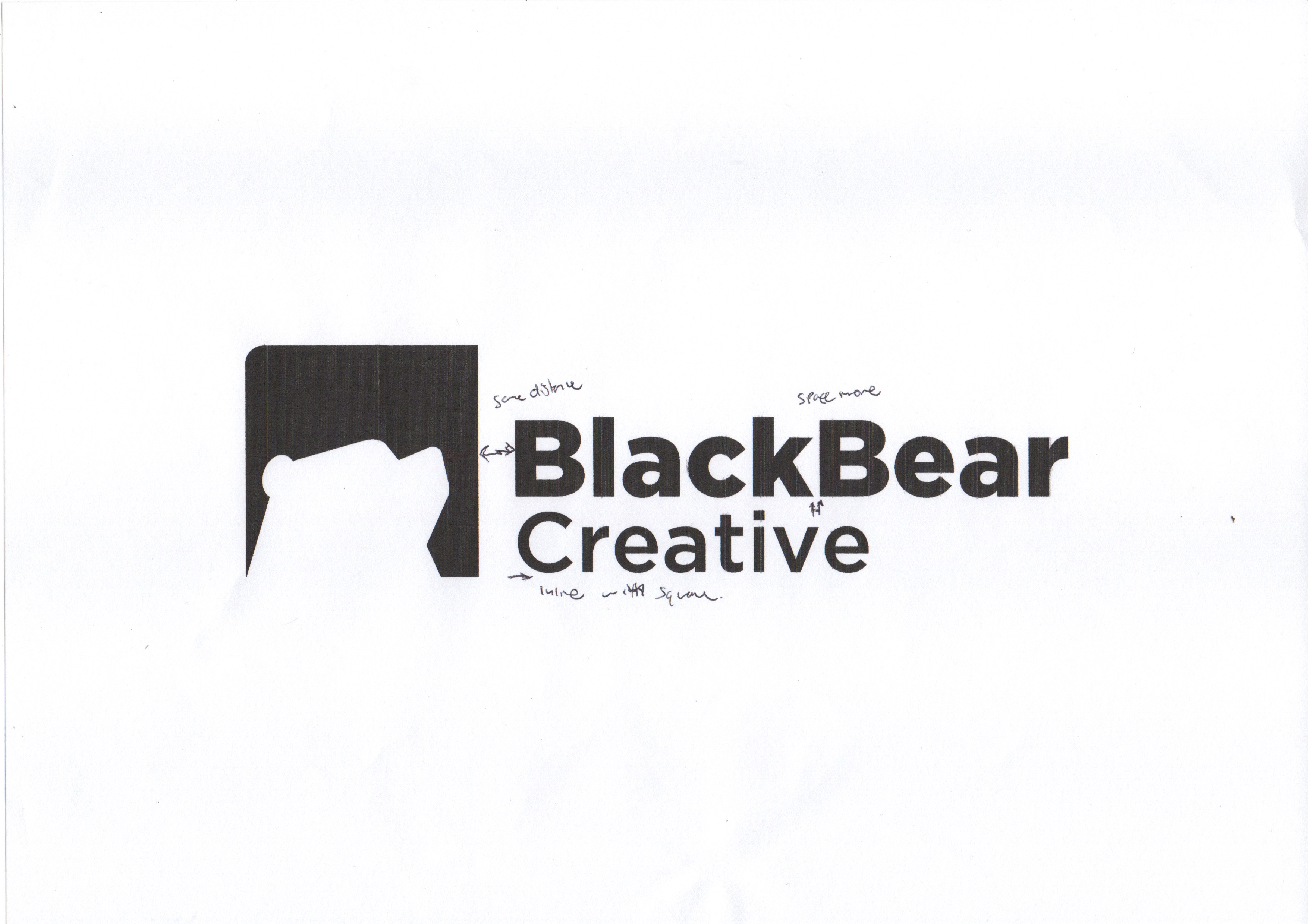 Black Bear concept notes