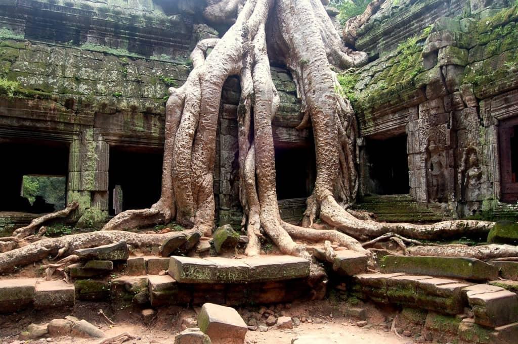 Viaggio di nozze da star - Cambogia, Tomb Raider