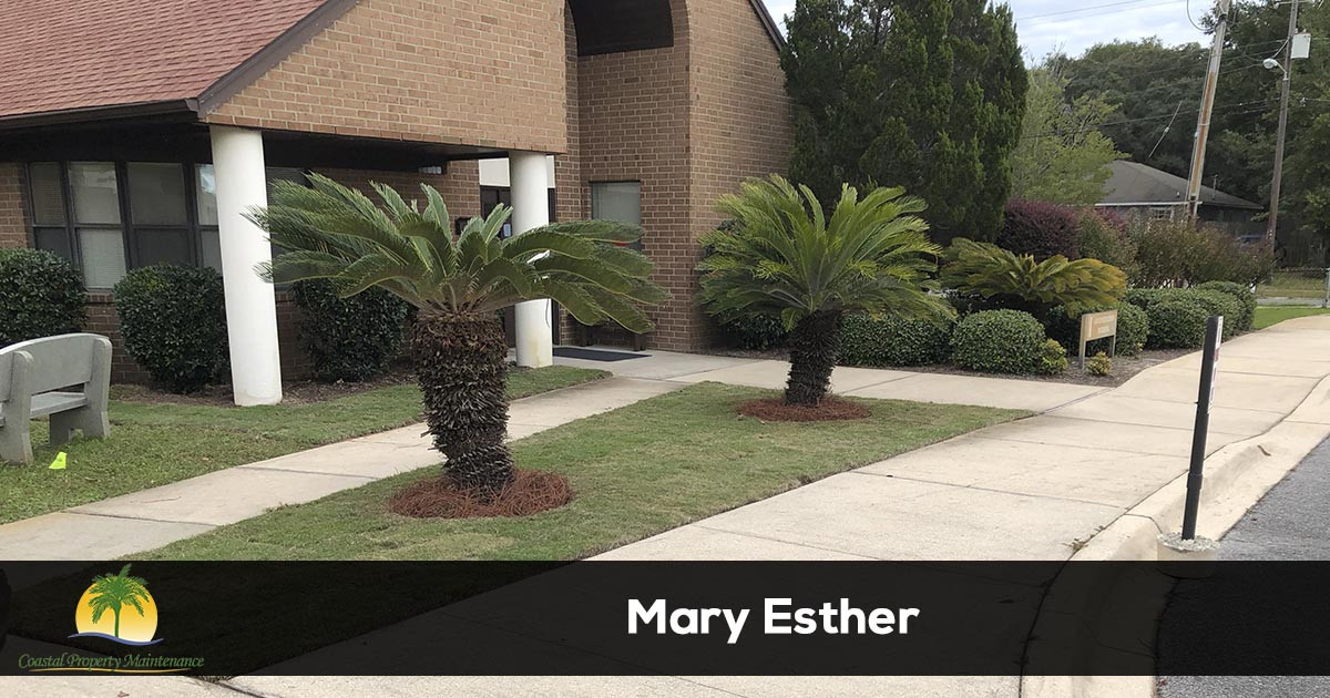 Mary Esther Lawn Care Services