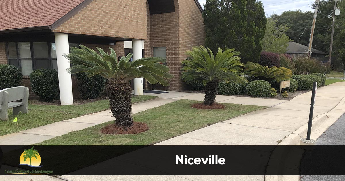 Niceville Florida Lawn Care and Landscaping services
