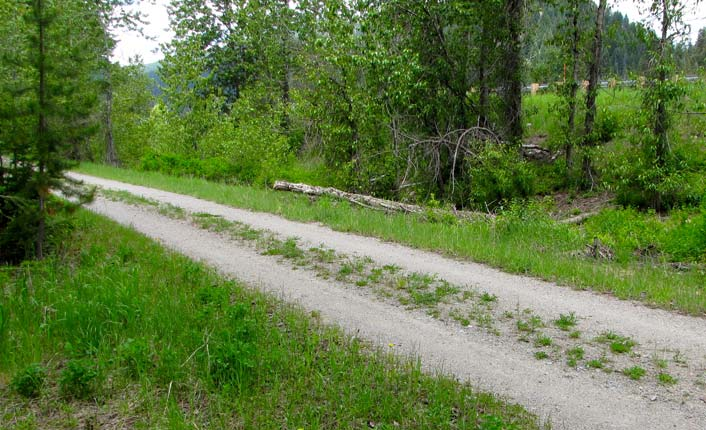 The trail is part of the larger, national Rails to Trails program. And it's beautiful in the springtime.