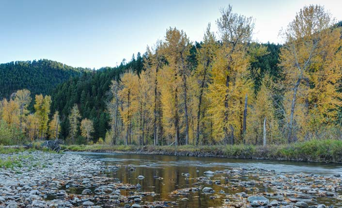 Rock Creek draws fly fishermen the world over.